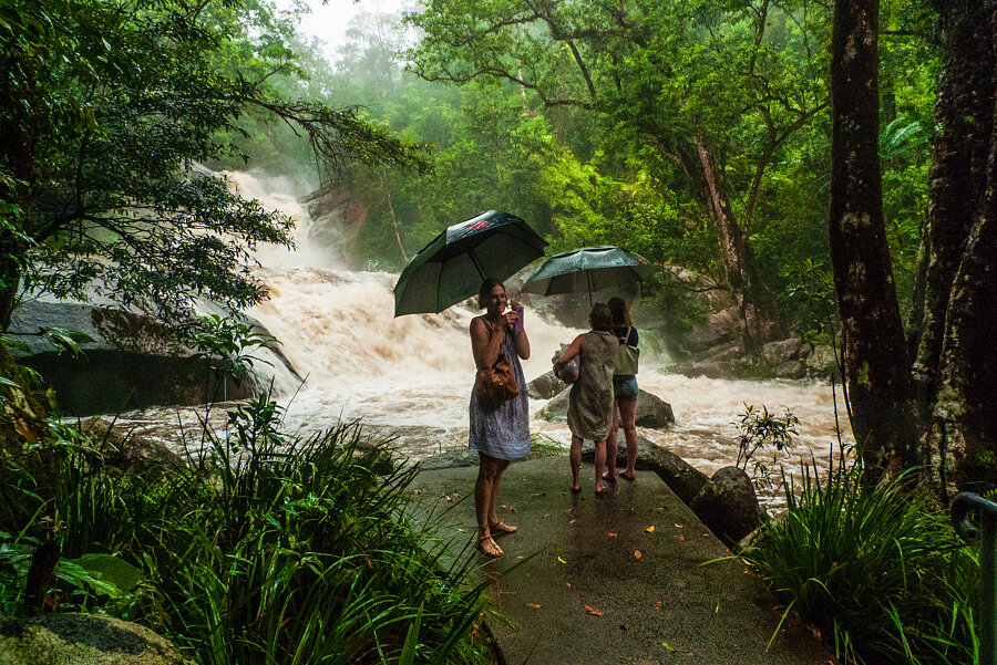 Visiting Josephine Falls during the wet season