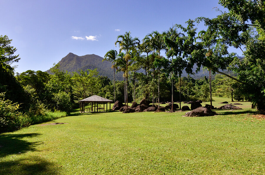 Picnic  lawn at Golden Hole & view of Broken Nose (Mt Bartle Frere)