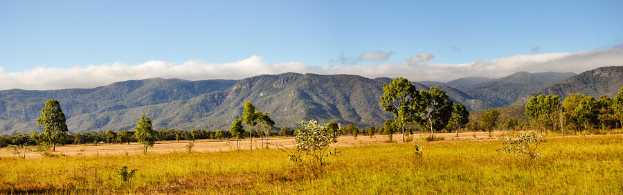 Great Dividing Range between Mt Molloy & Mt Carbine (Mt Lewis NP)