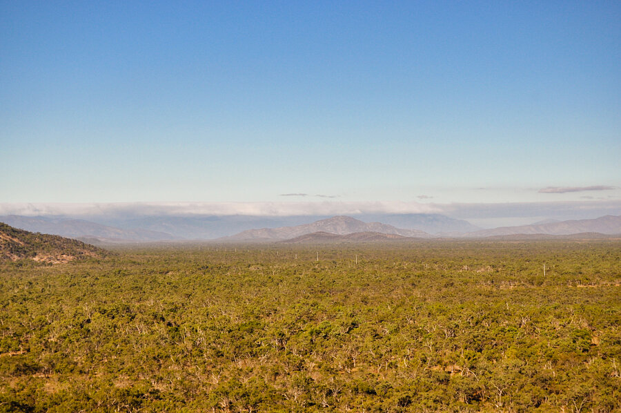 Mt Carbine tableland from Bob's Lookout, Desailly Range
