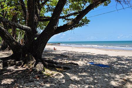 Etty Bay beach