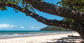 Etty Bay beach & swimming net