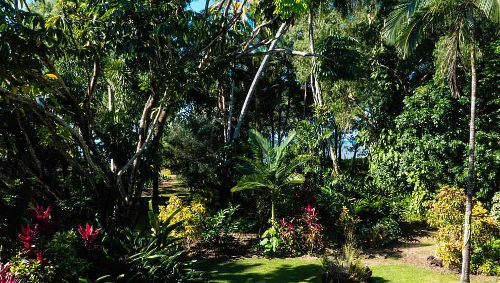 The Beachie garden