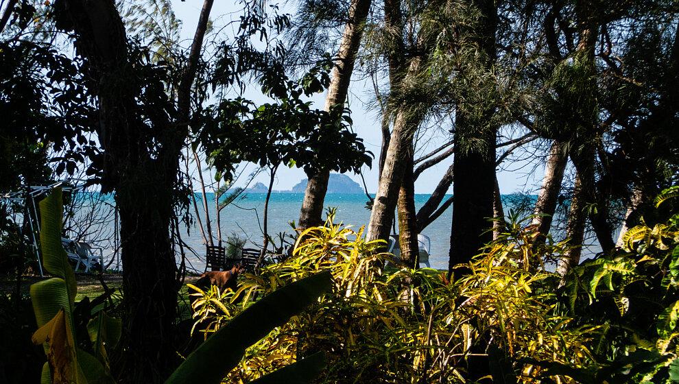 Russell Island (Frankland Islands) from the verandah