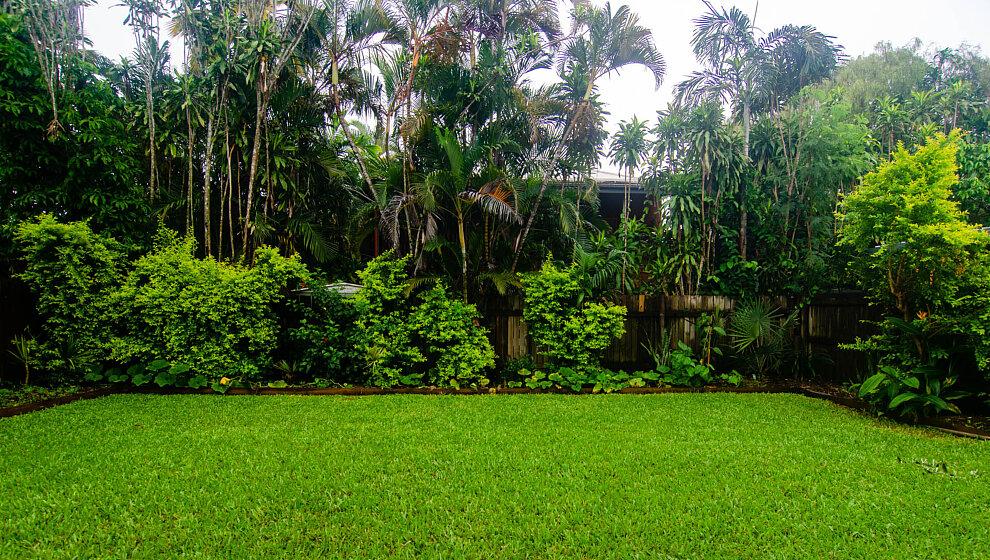 Red Sparrow garden