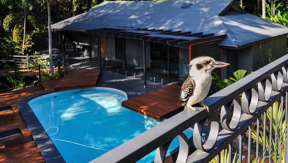 Swimming pool, Pool House & Kookaburra