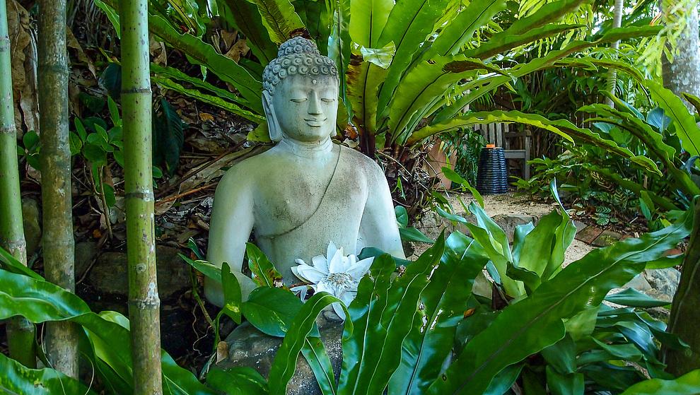 Touch of Bali - Patio garden