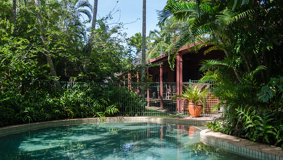 The swimming pool is like a pool in the rainforest