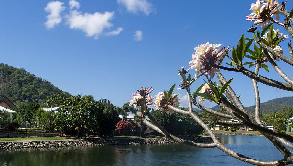 Bambusa view down Blue Lagoon