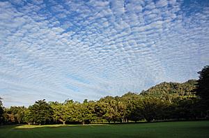 Mackerel sky over Goomboora Park