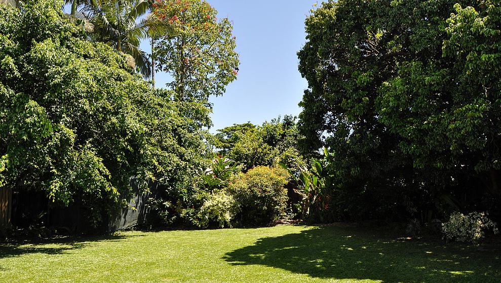 Large garden lawn